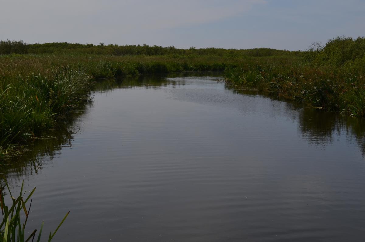 CallantsoogZwanenwater215