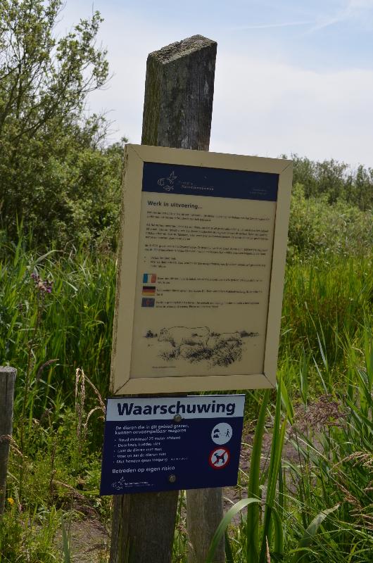 CallantsoogZwanenwater217