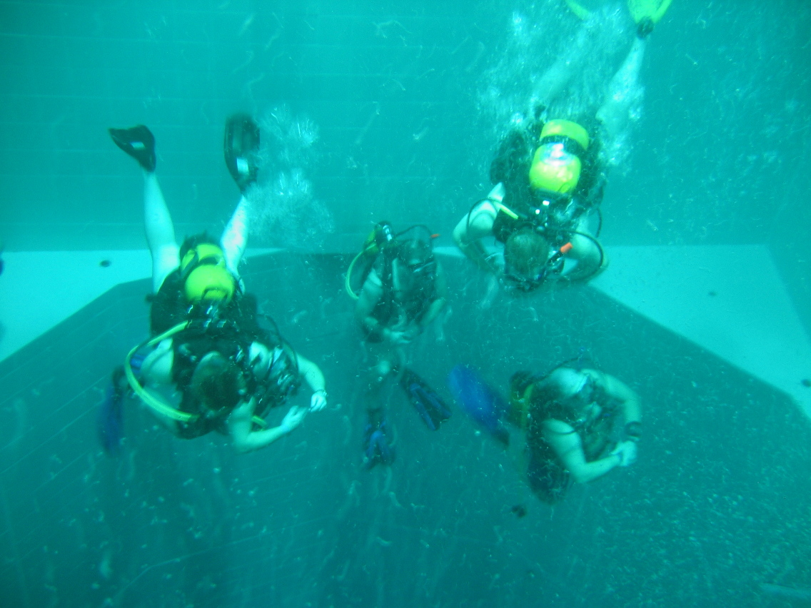 Nemo-33-135