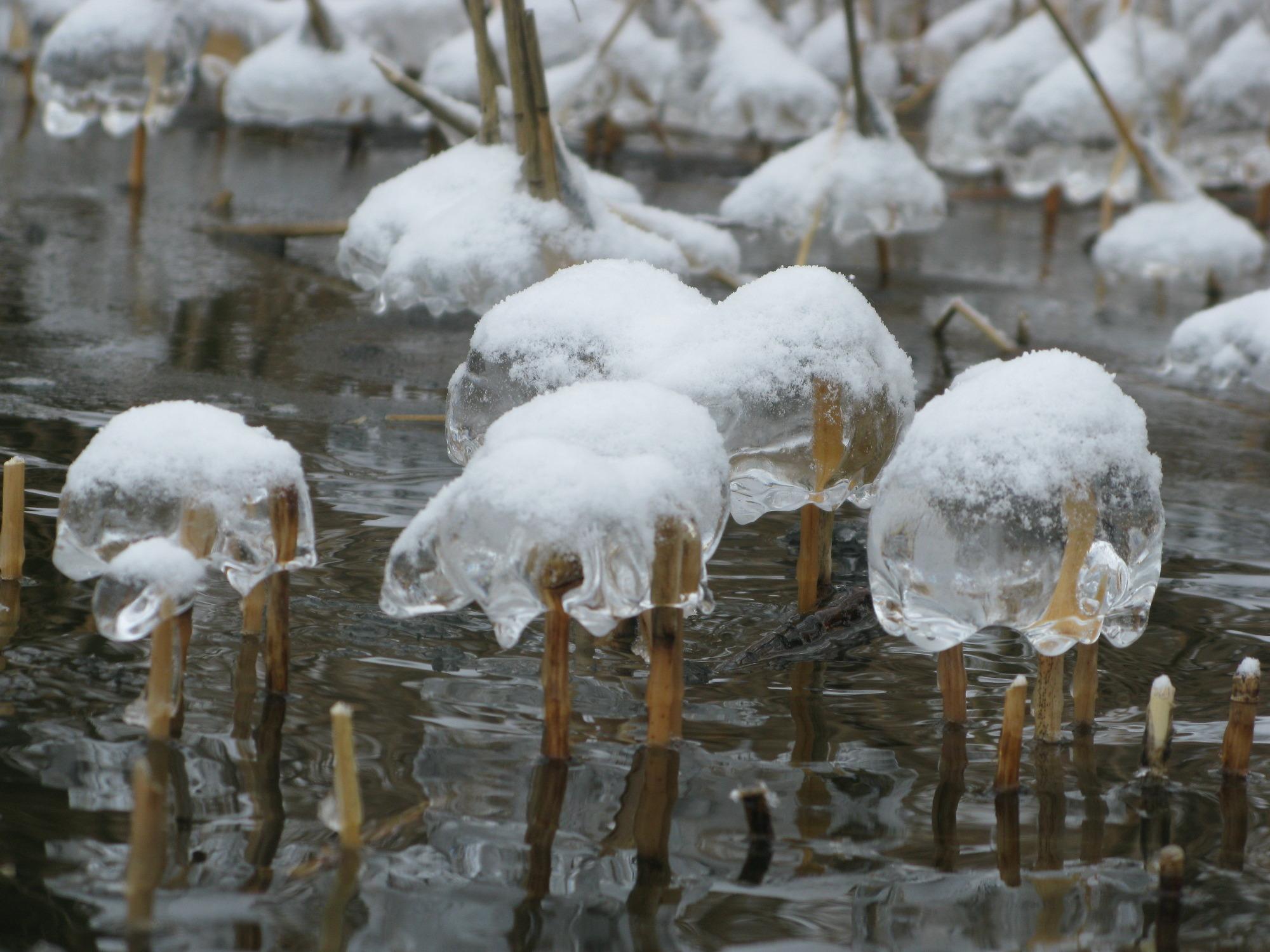 Wrakduik-in-de-sneeuw-008